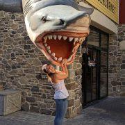 Marion Roess requin Europa Park au séminaire 2019